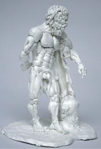 Estudio anatómico , Medidas: 18cm x 14cm x 10cm Ténica: Model magic (masa autofraguante) Año: 2010