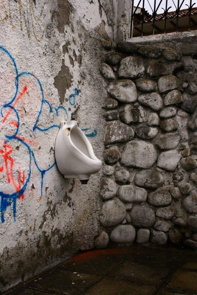 """""""Sanitario"""" Intervención Urbana Sector El Vado 2010"""