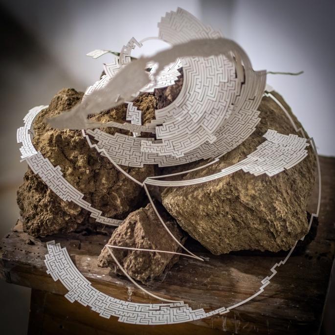"""""""Trodden/Recorrido""""  Papel, madera y piedras Dimensiones variables 2013"""