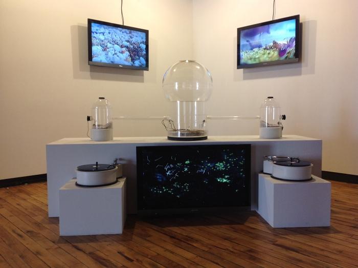 instalación audio visual con colonia de hormigas, 3 canales de video, 2 toca-discos, 2 canales de audio, computadora capturando movimientos, 2 microfonos de contacto