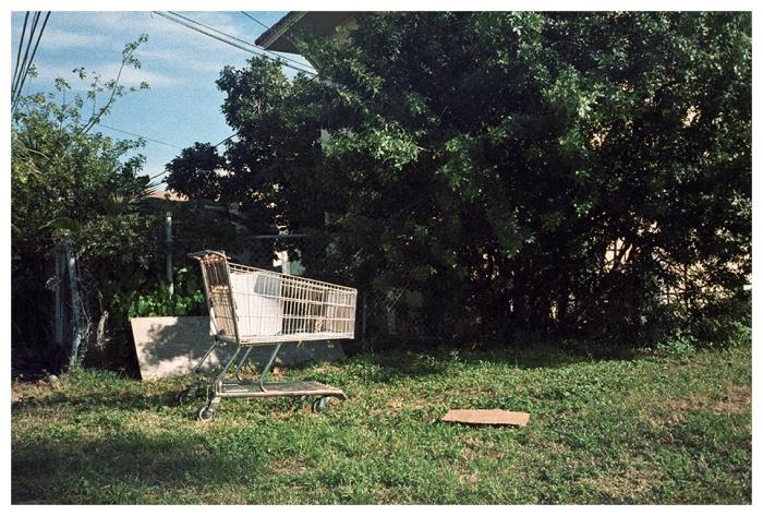 Chango, Florida. Fotografía 35mm 2011