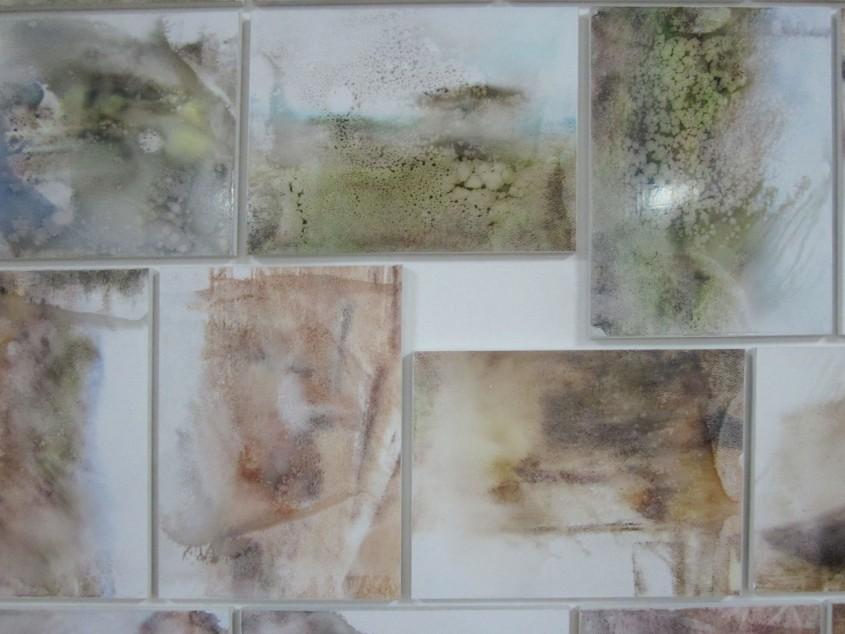 Hypómnema 2012 Fotografías despigmentadas sobre mdf 169 x 277 cms Colección, Museo Municipal  Guayaquil