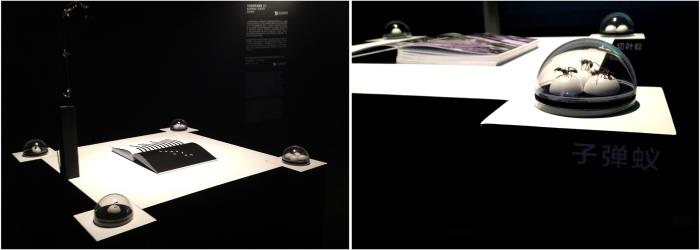 instalación audio visual con 4 especies de hormigas disecadas provenientes del Yasuni, software libre de lectura e interpretación de códigos QR, libro de tésis de autoría del artista acerca de la relación de las hormigas con los video-juegos, 1 cámara, 1 canal de video