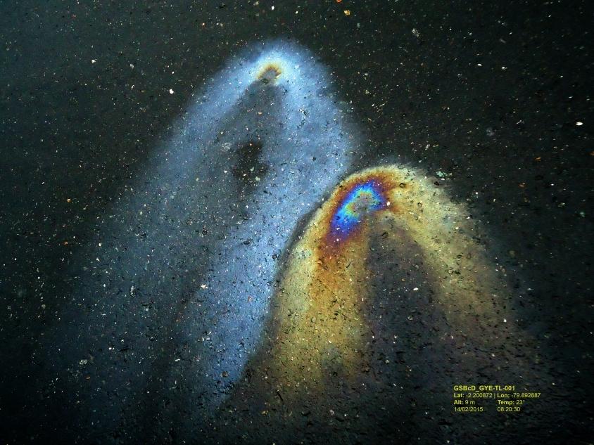 Galaxity (Según Hubble) Fotografías 29.7 cm x 42 cm 2015