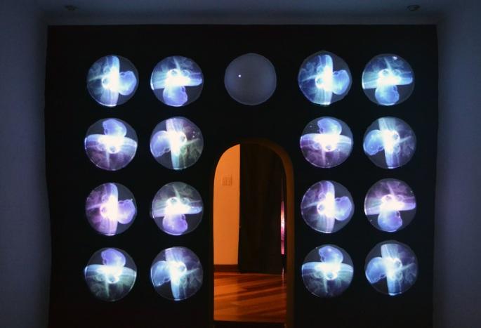 Gravidando, Instalación-Video mapping sobre 18 semi-esferas de yeso, dimesiones variables, 2014