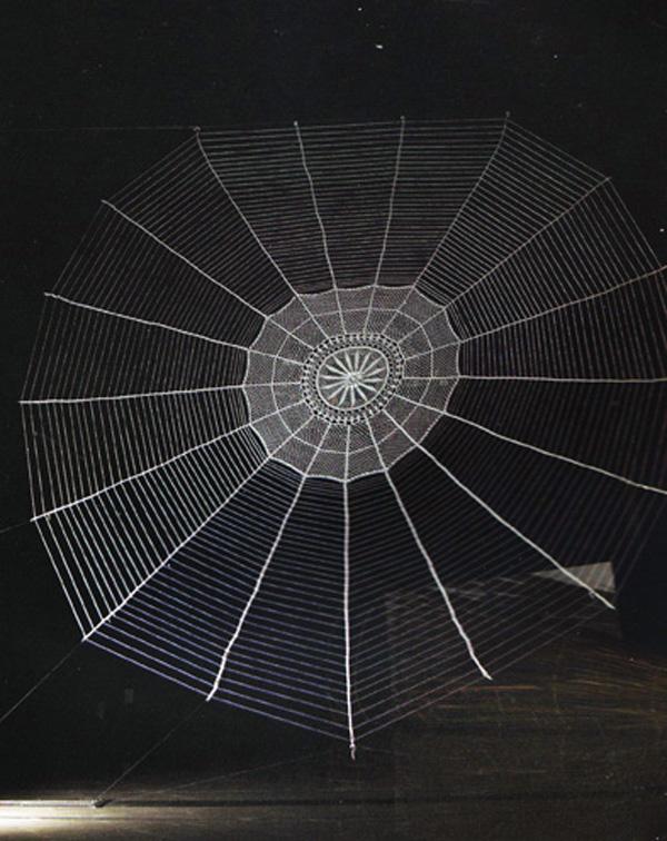 Telaraña, tejido a croché, 500cm de diámetro, 2008